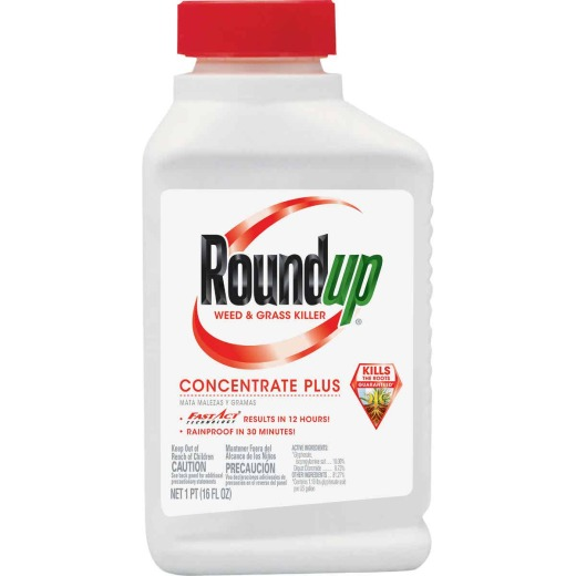 Roundup 1 Pt. Concentrate Plus Weed & Grass Killer